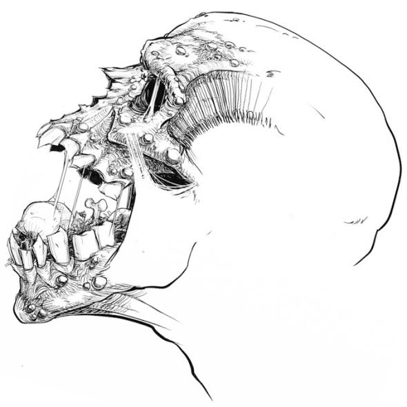 Dauthuz, tshirt design, deathmetal, gore, horror, zombie, illustration, skull, blackwhite
